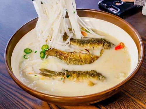 衡阳鱼粉培训